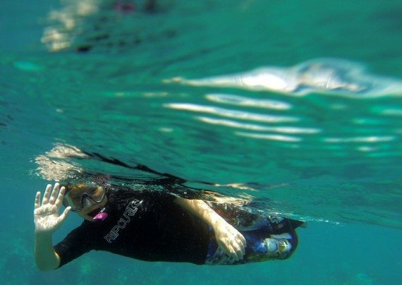 snorkeling Indians at Norman Island BVI's