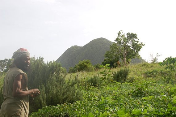 Commune Farmer atop Tet Paul with view of Pitons