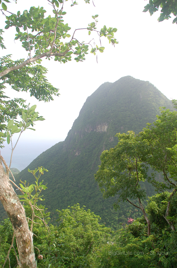 Tet Paul view of pitons
