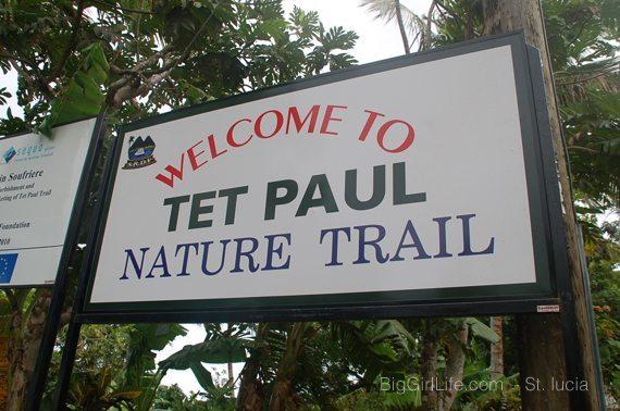 Tet Paul nature trail - St. Lucia