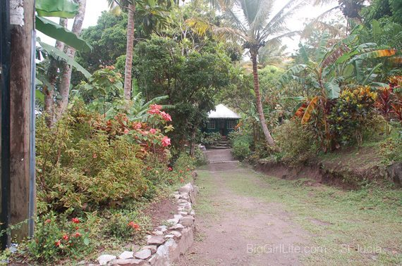 Welcome Tet Paul Nature Trail - St. Lucia