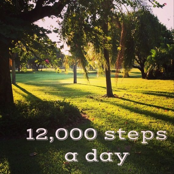12,000 steps