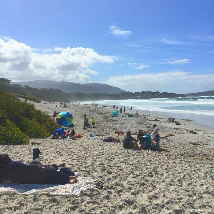 San Francisco and Big Sur | Big Girl Life 14