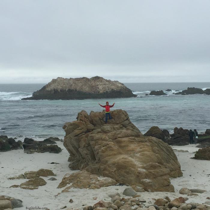 San Francisco and Big Sur | Big Girl Life 8